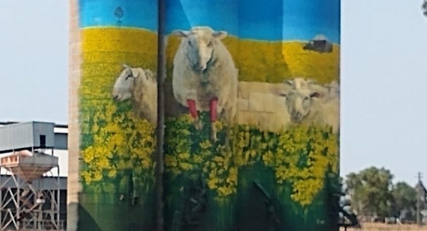 Wheat silos with sheep painted on them